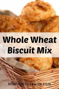 Fresh biscuits made from a whole wheat biscuit mix