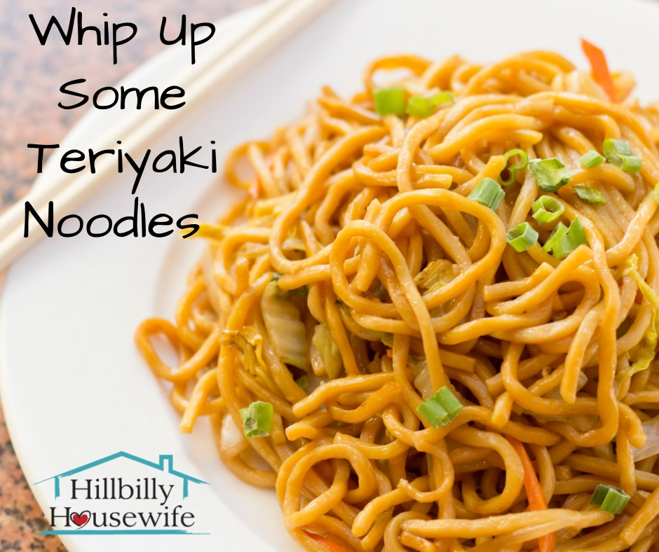 A simple dish of teriyaki noodles with green onion.