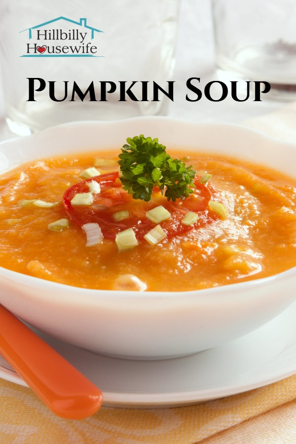 Bowl of pumpkin soup with tomato