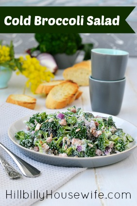cold-broccoli-salad
