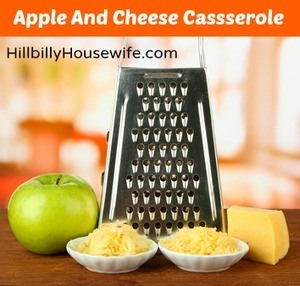 Metal grater and cheese, apple on a kitchen counter