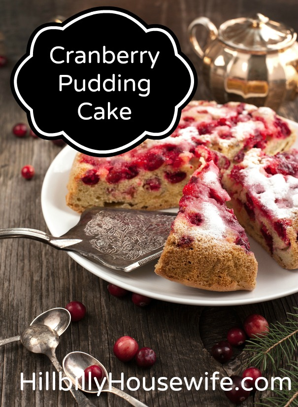 Cranberry Pudding Cake With Butter Sauce | Hillbilly Housewife