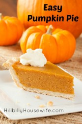 A slice of my favorite pumpkin pie. Recipe in the blog post.