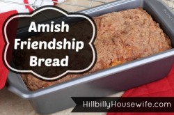 Loaf of fresh baked friendship bread