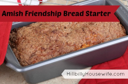 Loaf of Yummy Friendship Bread