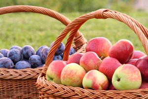 Baskets of Apples and Plums