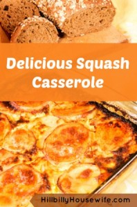 Yummy Yellow Squash Casserole
