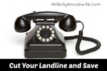 Cut Your Landline and Save