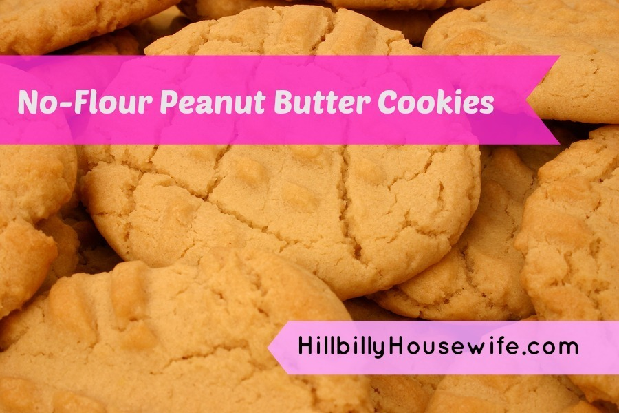 Peanut Butter Cookie Recipe Without Flour Hillbilly Housewife