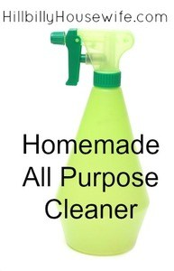 A simple recipe for a homemade all purpose cleaner
