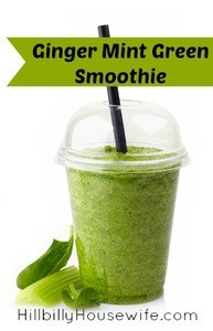 Glass of healthy green vegetable smoothie with mint and ginger