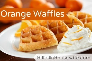 Waffles made with Orange Juice