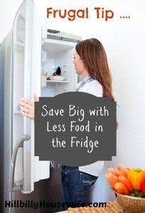 Frugal Tip - Keep Less Food In Your Fridge