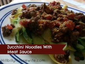 Zucchini and Squash Noodles with Sauce