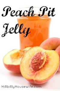 Homemade jelly made from peach pits