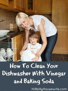 How To Clean Your Dishwasher with Baking Soda and Vinegar