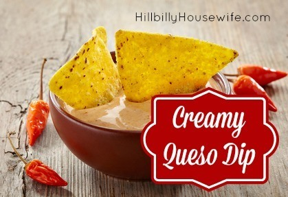 Bowl of  queso dip and nachos