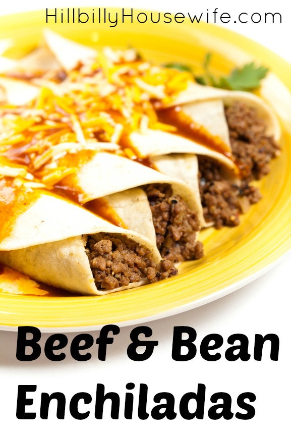 Plate of Bean and Beef Enchiladas