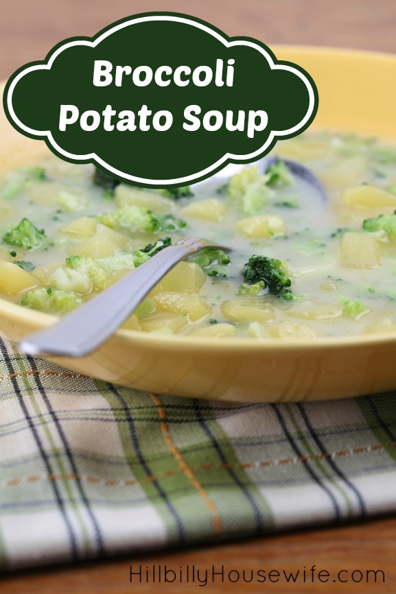 Broccoli and Potato Soup - Great For Freezer Cooking