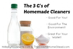 Homemade Natural Cleaners that are good for you, good for the environment and great for your wallet