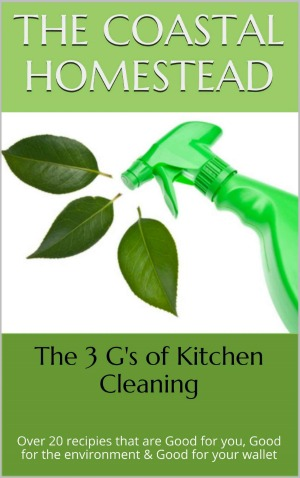 The 3 G's Of Kitchen Cleaning