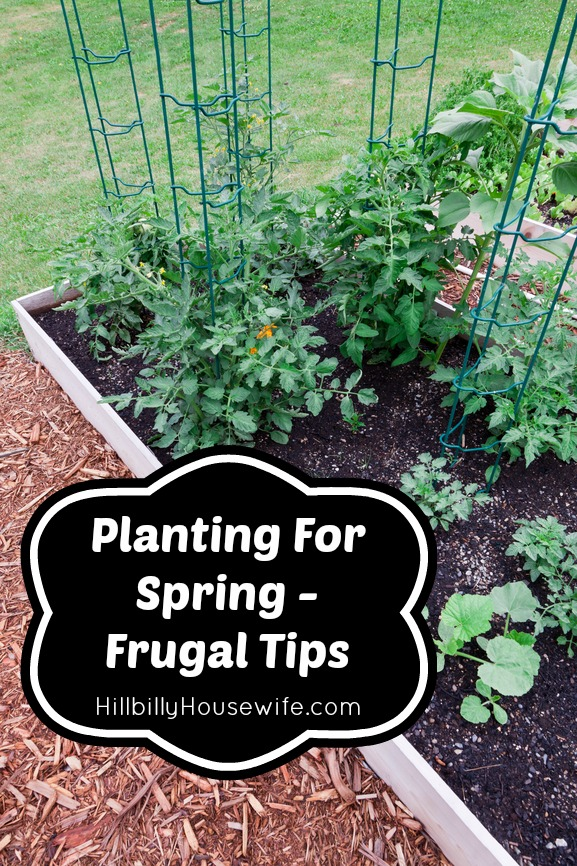 Planting For Spring – Frugal Tips