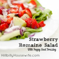 Plate of a delicious summer salad with strawberries and poppy seed dressing
