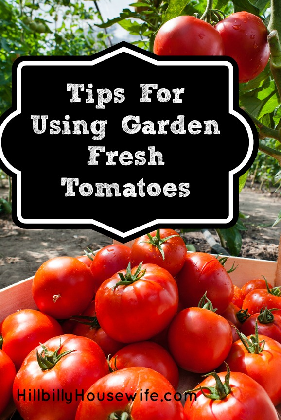 Tips for Using and Storing Tomatoes
