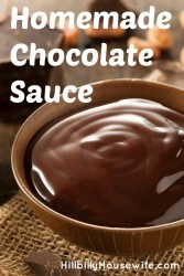 Bowl of delicious chocolate sauce made from cocoa powder, sugar, vanilla and more.