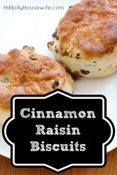 Yummy biscuits or scones made with cinnamon and raisins and drizzled with frosting.