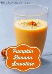 Glass of pumpkin smoothie blended with frozen banana and milk.