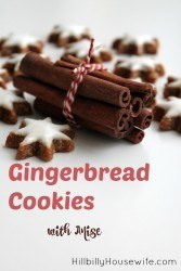 Easy Gingerbread Cookie recipe with Anise.