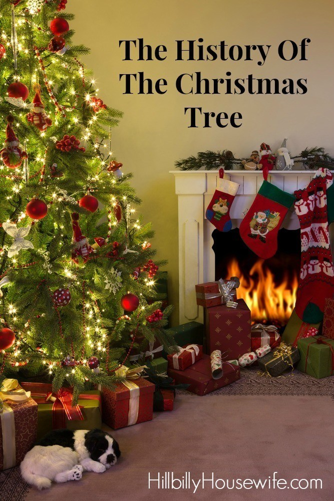 christmas tree tradition history