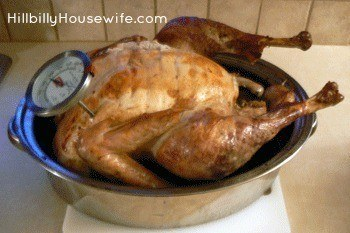 Roasted Turkey fresh from the oven.