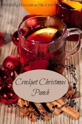 A yummy kid-friendly punch recipe perfect or the holidays. Heat it up in your slow cooker and serve.