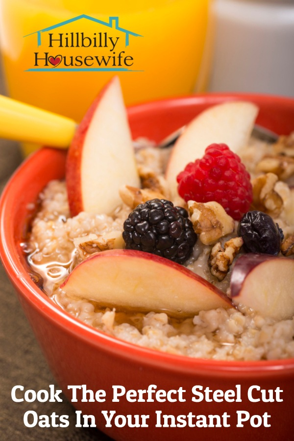 A bowl of perfectly cooked steel cut oats prepared in the instant pot